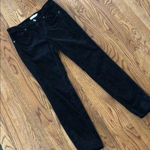 Loft velvet modern skinny pants